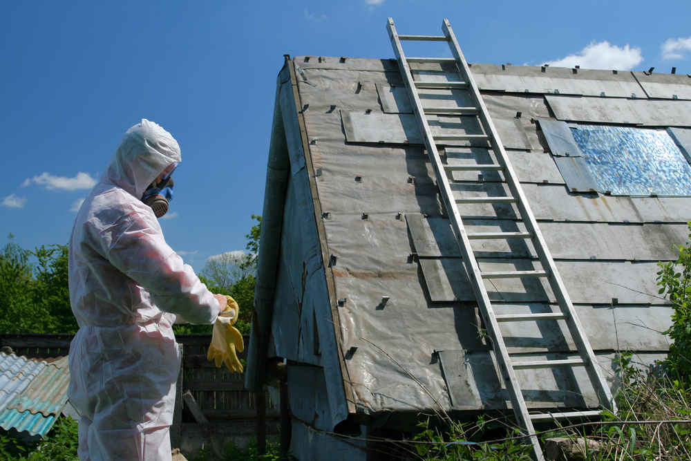 asbestos removal environmental services
